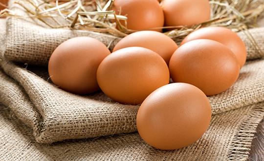 달걀이 건강에 좋은 5가지 리유