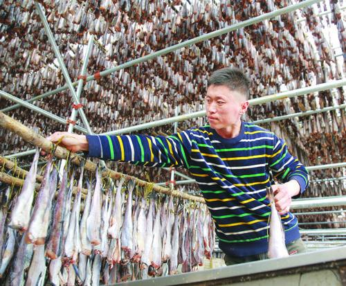 훈춘해미다식품유한회사의 명태건조 작업