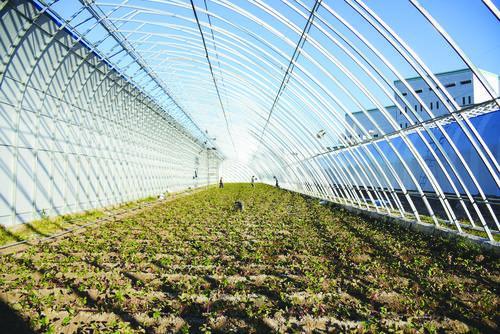 소영촌 현대농업생태원