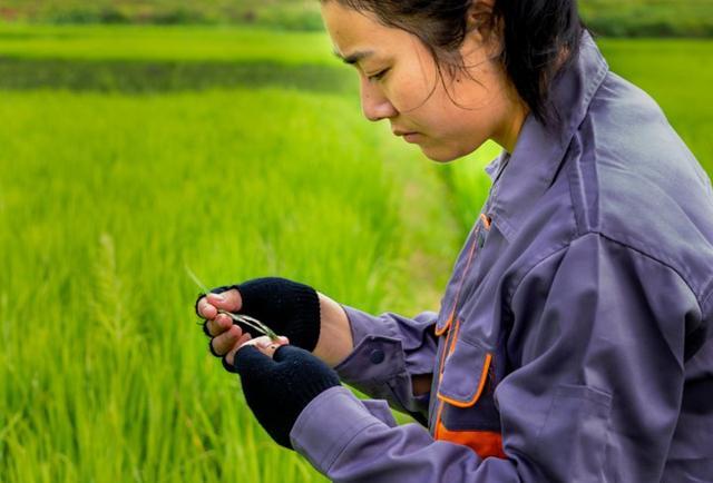 전공 살려 농업에 종사하는 직업대학생 증가세 보여