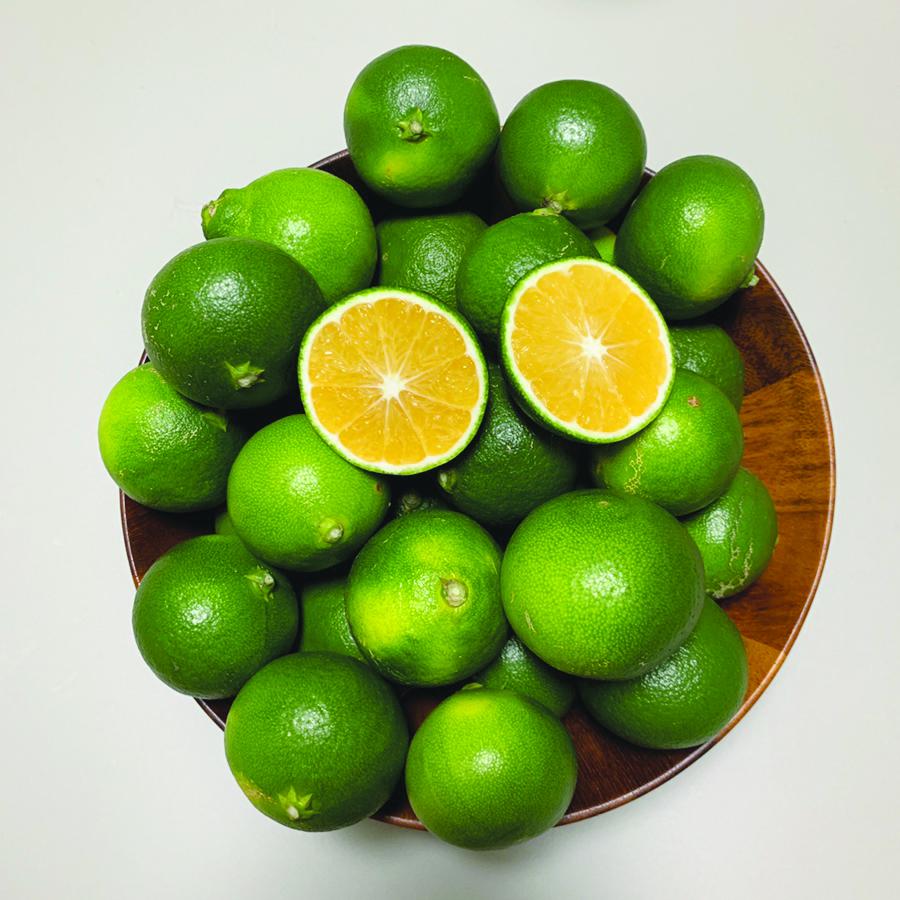 덜 익어도 야무지다…풋풋한 과일의 재발견