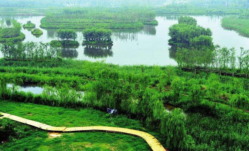 과학적인 습지 보호 발전 탐색
